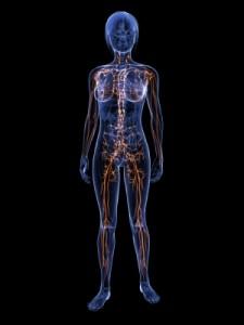 Lymphödeme treten nach Lymphknotenentfernung häufiger auf.